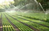 New irrigation systems to increase corn and bean yields